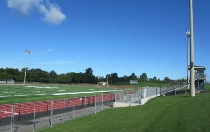 Hornets, on new turf, look to thrive again