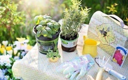 NAMOW, NOPL partner for 2017 community garden