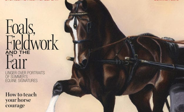 Cazenovia-based horse magazine wins national awards