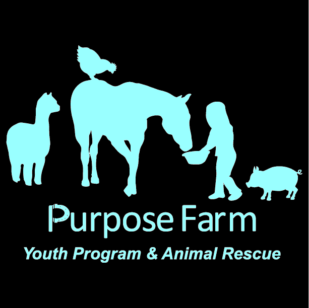 Purpose Farm wins Laci's Giveback Celebration