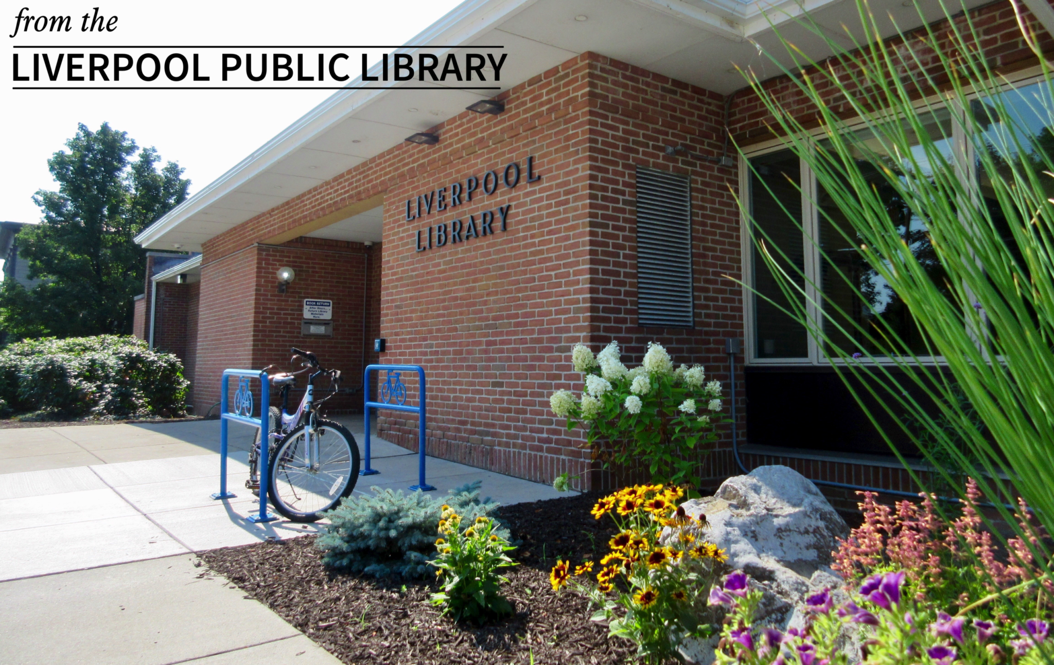 From the Liverpool Public Library: LPL builds new pavilion courtesy of Alfred W. Richberg Fund