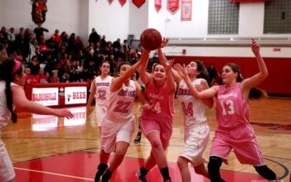 Girls hoops Bees fall to F-M again