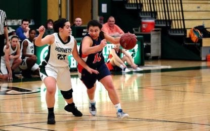Girls Warriors upend no. 3 seed F-M; C-NS ousted by West Genny