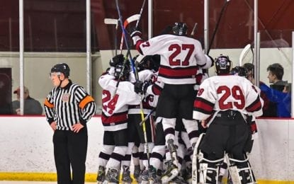 Hockey Cougars, Wildcats take different paths to sectional final