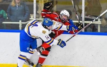 Hockey Wildcats blank B'ville, clinch division title