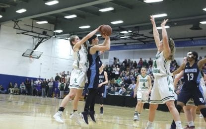 Ludden girls rout Grimes for sectional Class B crown