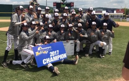 Liverpool baseball is state Class AA champions