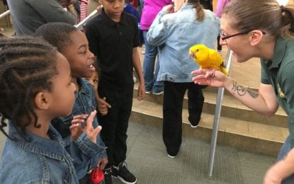 From the Liverpool Public Library: Zoo to You brings creatures to LPL