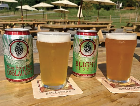 Eagle news online regional craft brewers win awards at for New york craft breweries
