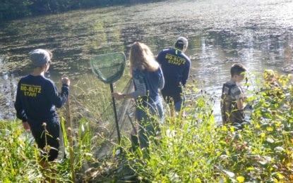 BioBlitz at Lakeside Park to offer experiential learning for kids